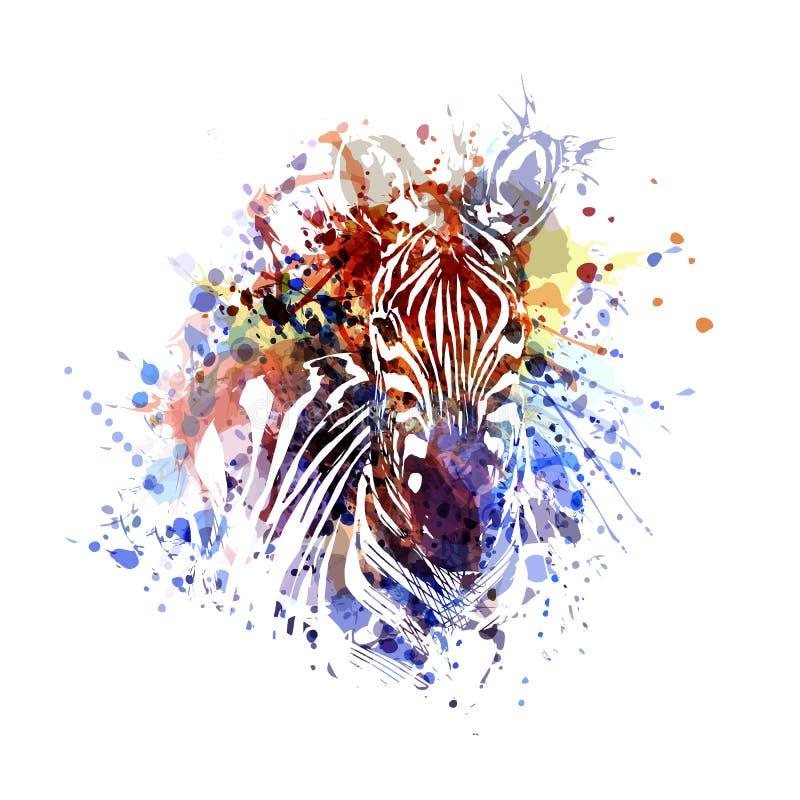 Vectorkleurenillustratie van zebra royalty-vrije illustratie