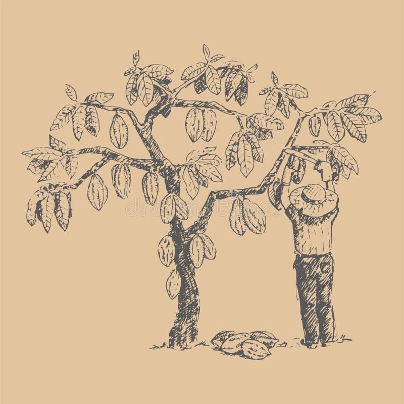 Vectorkokosboom met de landbouwershand getrokken schets van het mensenkarakter vector illustratie