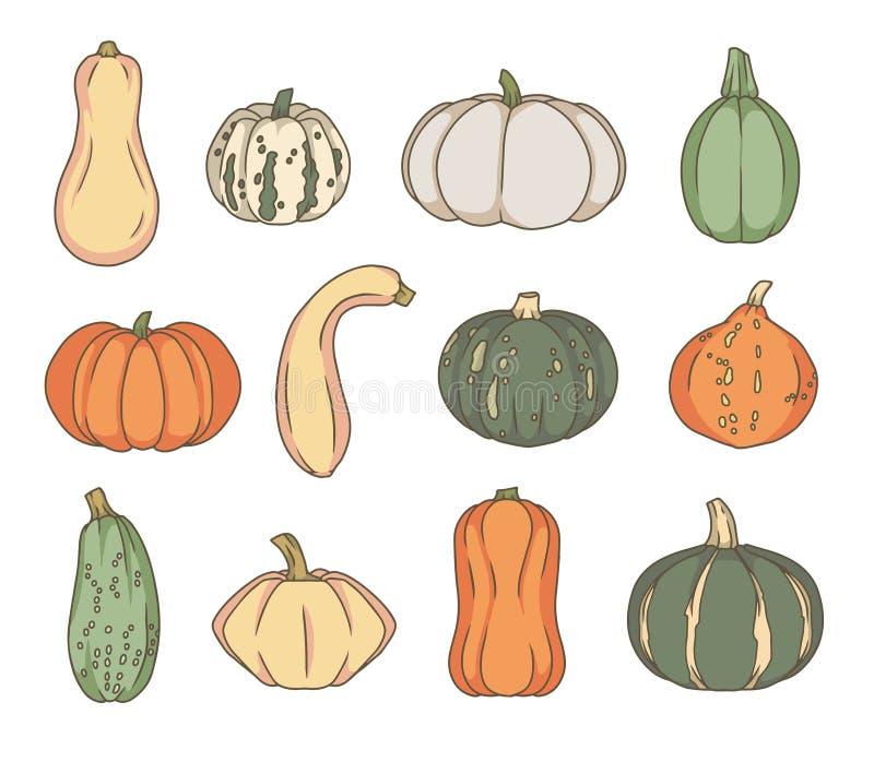 Vectorkunstinzameling van verschillende soorten Pompoen en Pompoengroenten royalty-vrije illustratie