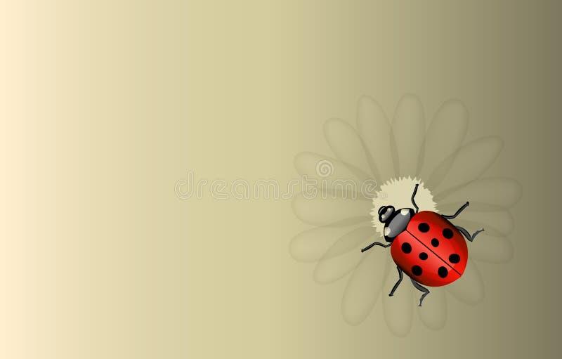 Vectorlieveheersbeestje En Madeliefjeachtergrond Stock Fotografie