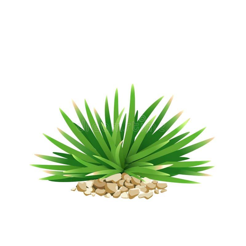 Vectormini mondo grass, met kleine steen stock illustratie