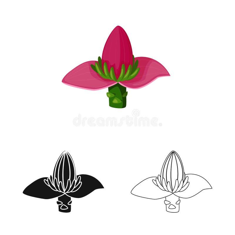 Vectorontwerp van banaan en bloemteken Inzameling van banaan en tropisch vectorpictogram voor voorraad stock illustratie