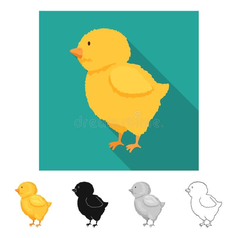 Vectorontwerp van kuiken en Pasen-symbool Reeks van kuiken en leuk vectorpictogram voor voorraad royalty-vrije illustratie