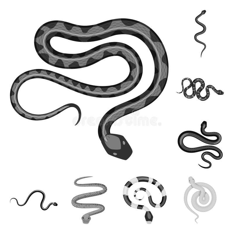 Vectorontwerp van kwaad en beetteken Inzameling van kwaad en reptielvoorraadsymbool voor Web vector illustratie