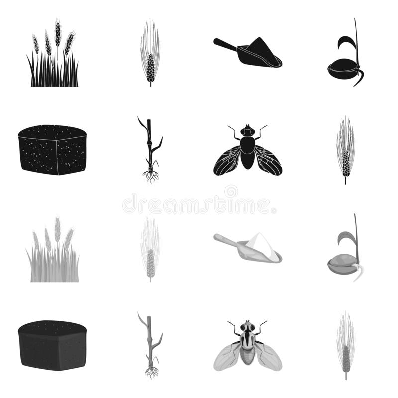 Vectorontwerp van landbouw en de landbouwpictogram Inzameling van landbouw en de vectorillustratie van de installatievoorraad royalty-vrije illustratie
