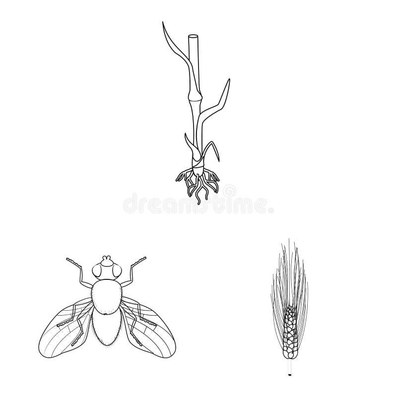 Vectorontwerp van landbouw en de landbouwteken Inzameling van landbouw en installatie vectorpictogram voor voorraad royalty-vrije illustratie