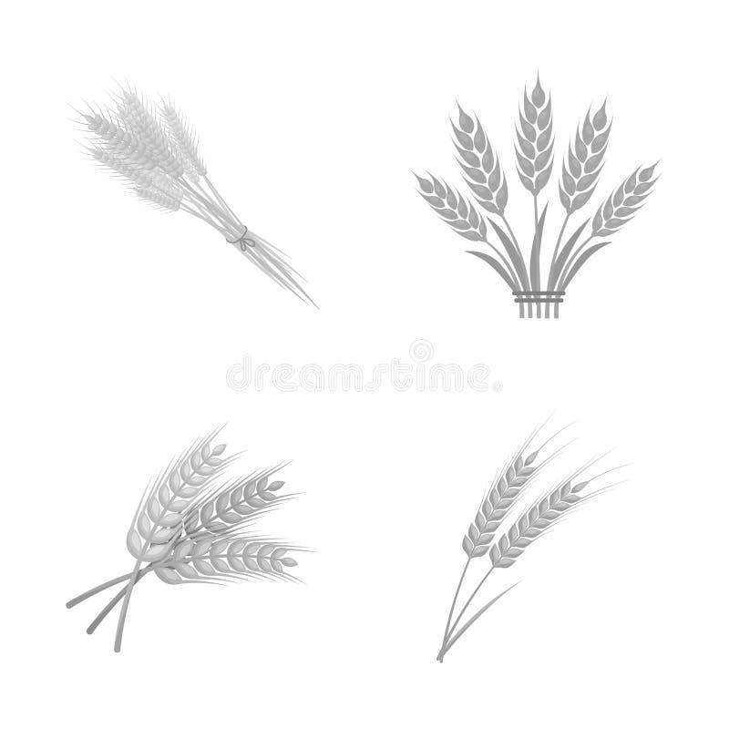 Vectorontwerp van tarwe en steelsymbool Reeks van tarwe en korrel vectorpictogram voor voorraad stock illustratie