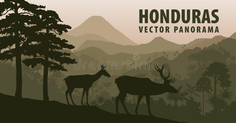 Vectorpanorama van Honduras met wildernis meest raimforest en wit-de steel verwijderde van deers vector illustratie