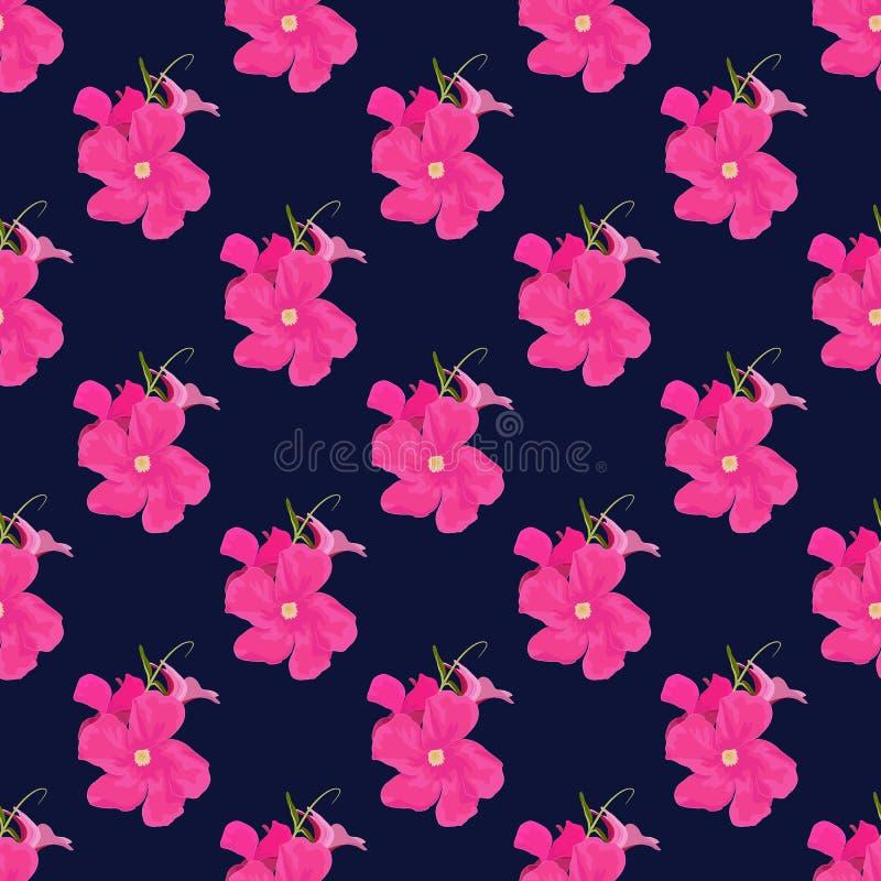 Vectorpatroon van Roze Mandevilla Sanden vector illustratie