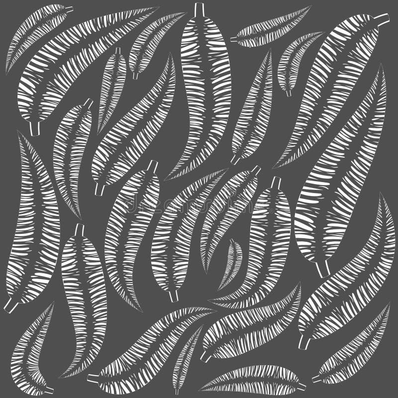Vectorpatroon van witte veren op een grijze achtergrond vector illustratie