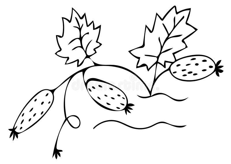 Vectorpictogram van de komkommer het zwarte lijn royalty-vrije illustratie
