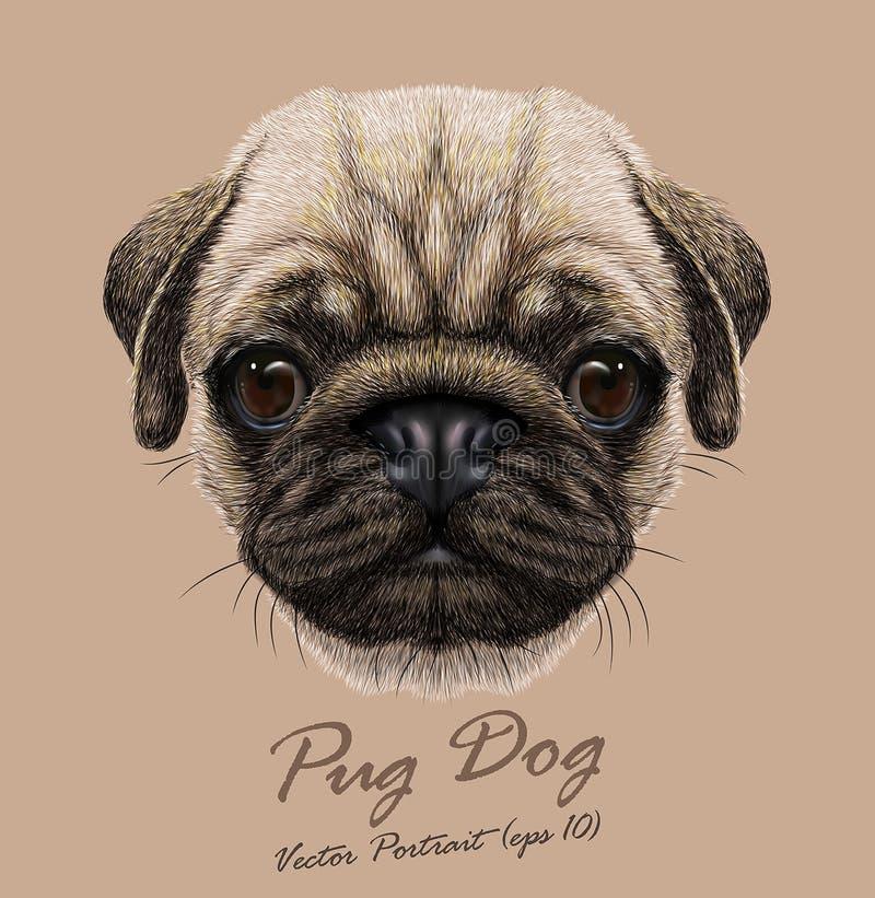 Vectorportret van jonge Pug Hond stock foto