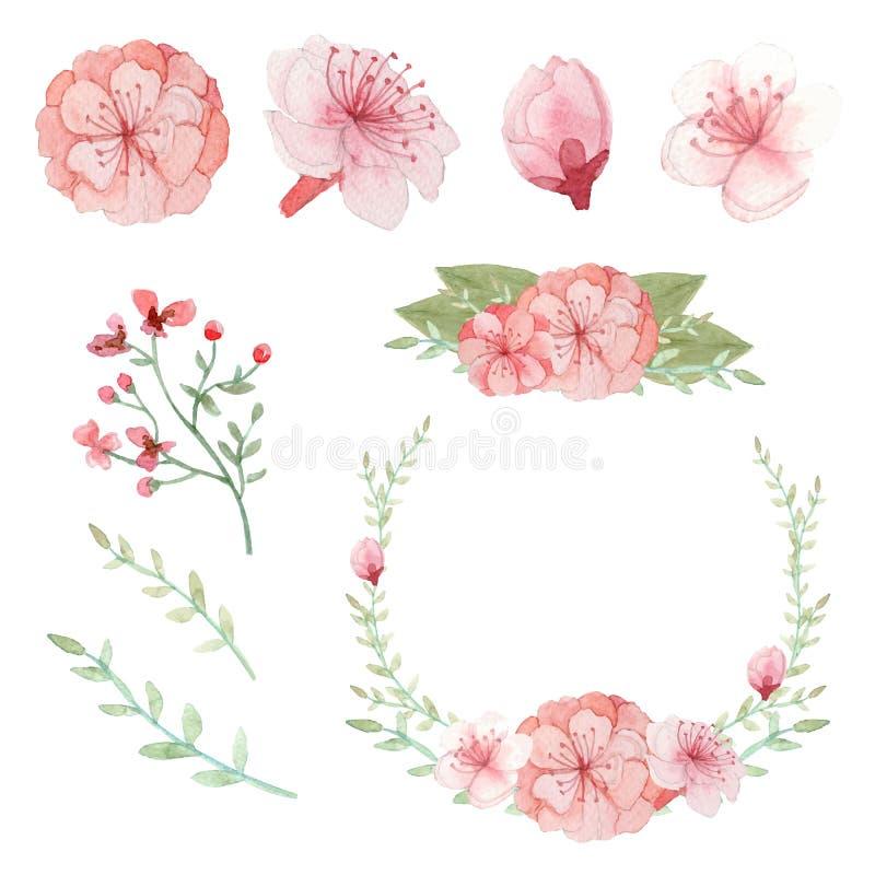 Vectorreeks bloemen, bladeren en takkenregelingen stock illustratie