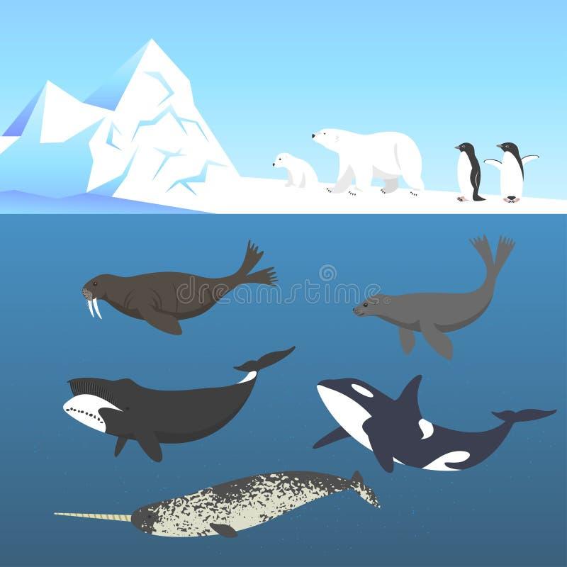 Vectorreeks dieren die in een koud klimaat leven stock illustratie