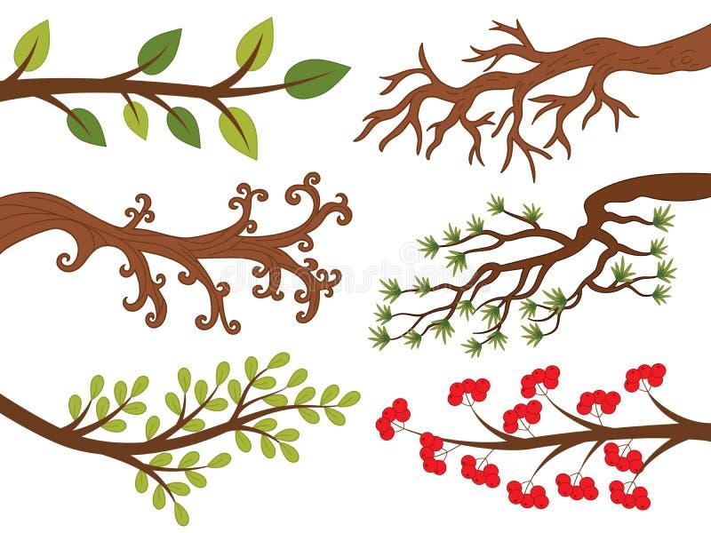 Vectorreeks Diverse Boomtakken De boom vertakt zich Vectorillustratie vector illustratie