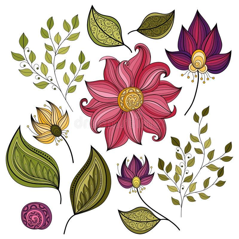 Vectorreeks Gekleurde Contourbloemen en Bladeren royalty-vrije illustratie