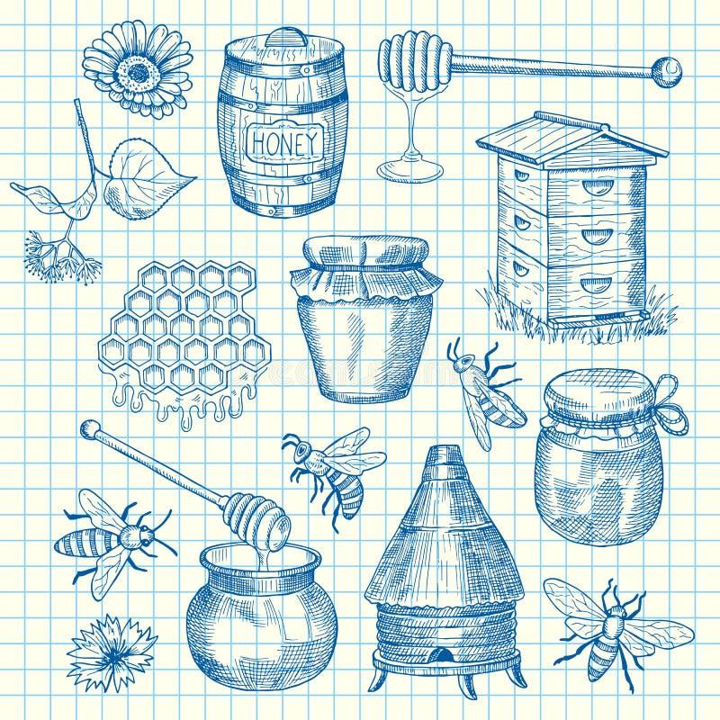 Vectorreeks hand getrokken honingselementen op de illustratie van het celblad vector illustratie