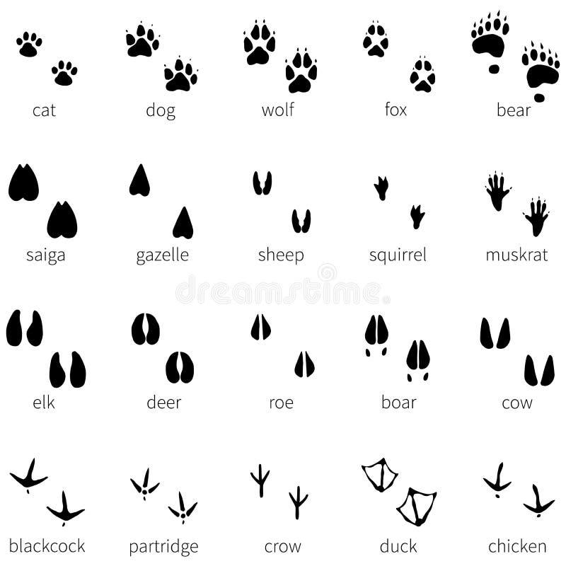 Vectorreeks van 20 dierlijk voetafdrukkenpictogram royalty-vrije illustratie