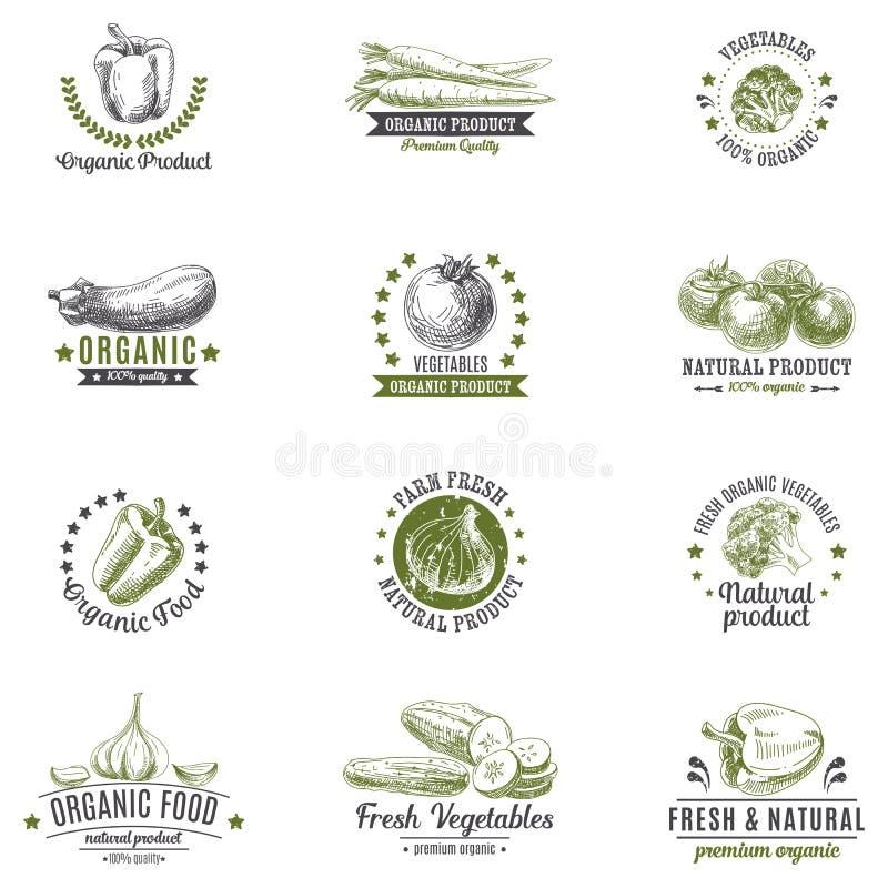 Vectorreeks van etiketten, emblemen en hand getrokken ontwerp vector illustratie
