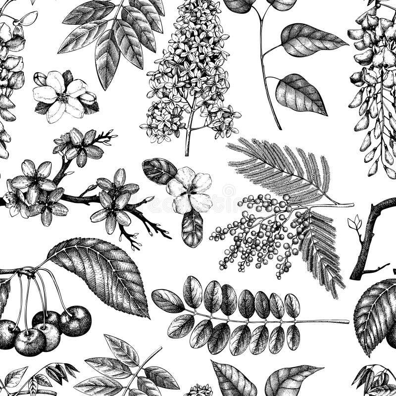 Vectorreeks van hand getrokken tot bloei komende bomenillustratie De elementen van het de lenteontwerp De vectorinzameling van de stock illustratie