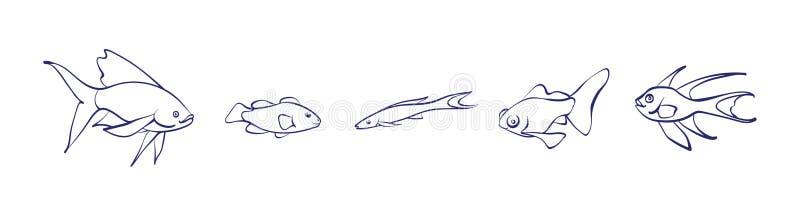 Vectorreeks van het overzicht van beeldverhaalvissen Grafische onderwater dierlijke illustratie die op witte achtergrond voor het royalty-vrije illustratie