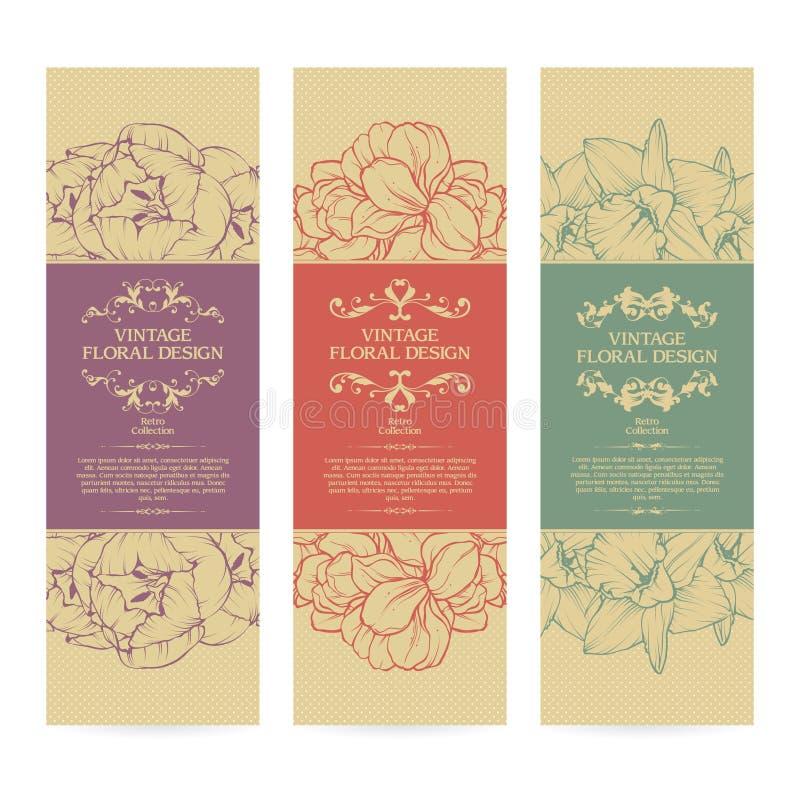 Vectorreeks van uitstekend sier de bannersontwerp van kader bloemenmalplaatjes stock illustratie