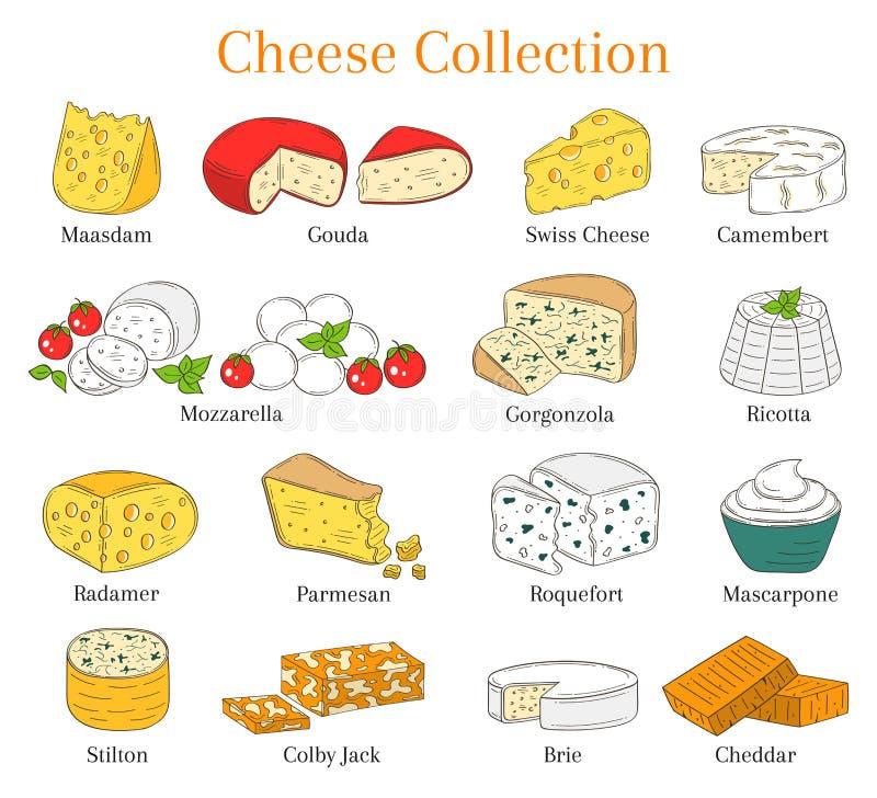 Vectorreeks verschillende types van kaas, hand getrokken die illustratie op witte achtergrond wordt geïsoleerd royalty-vrije illustratie