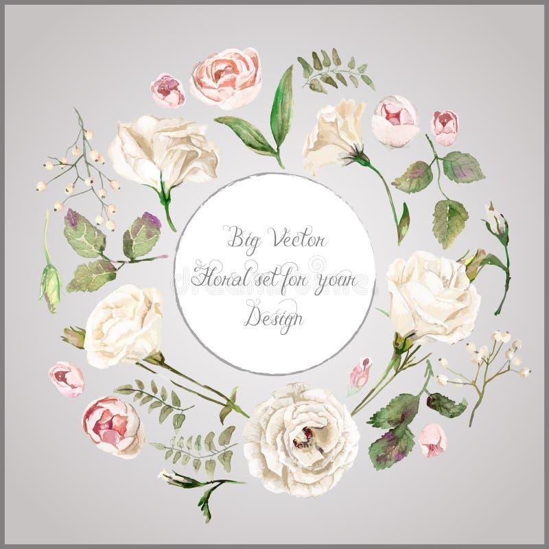 Vectorreeks verschillende witte, beige bloemen voor ontwerp royalty-vrije illustratie