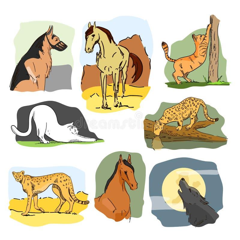 Vectorreeks wildernis en huisdieren Hand getrokken beeldverhaalillustratie Paard, hond, kat, wolf, luipaard vector illustratie