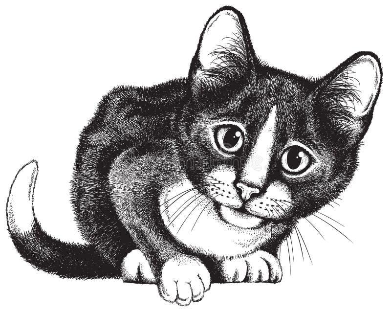 Vectorschets van het zwart-witte kat buigen vector illustratie