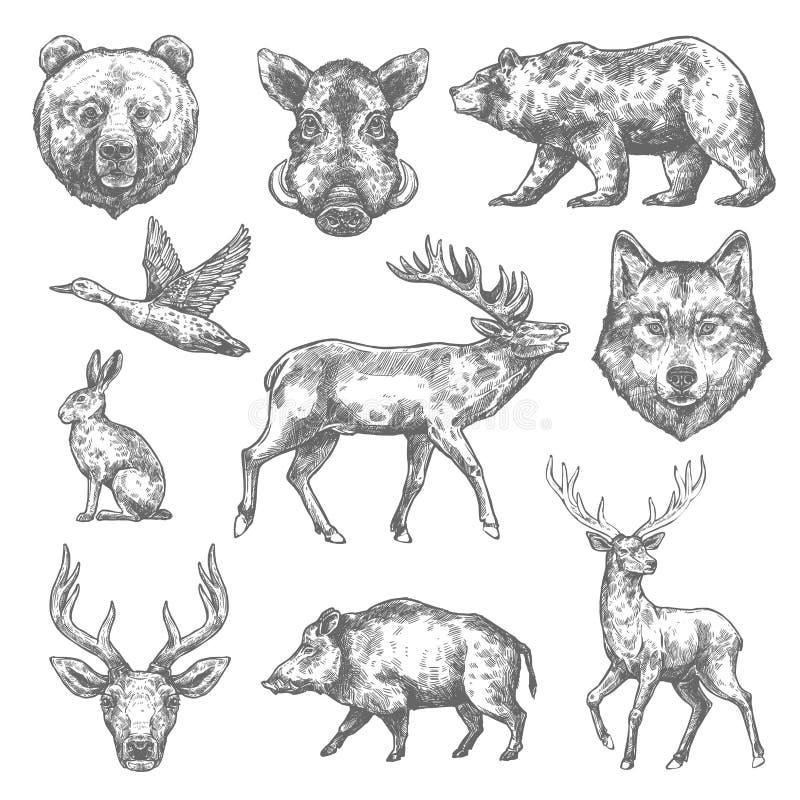 Vectorschets wilde dierlijke pictogrammen voor de jacht of dierentuin vector illustratie
