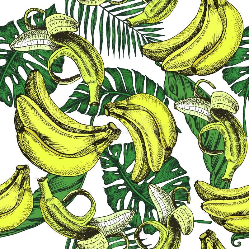 Vectorschetsfruit als achtergrond De illustratiebanaan en extic doorbladert patroon royalty-vrije illustratie