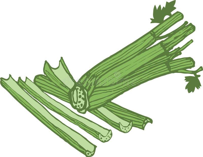 Vectorselderieillustratie in drie kleuren van groen royalty-vrije illustratie