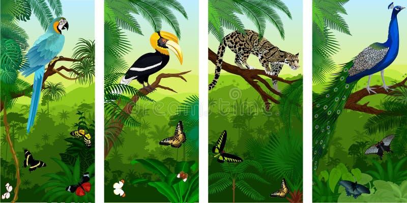 Vectorset van verticale baners van het wildernisregenwoud met betrokken luipaard, peacoock, blauwe aronskelken, grote hornbill en royalty-vrije illustratie