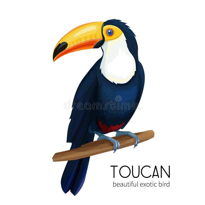Vectortoekanvogel vector illustratie