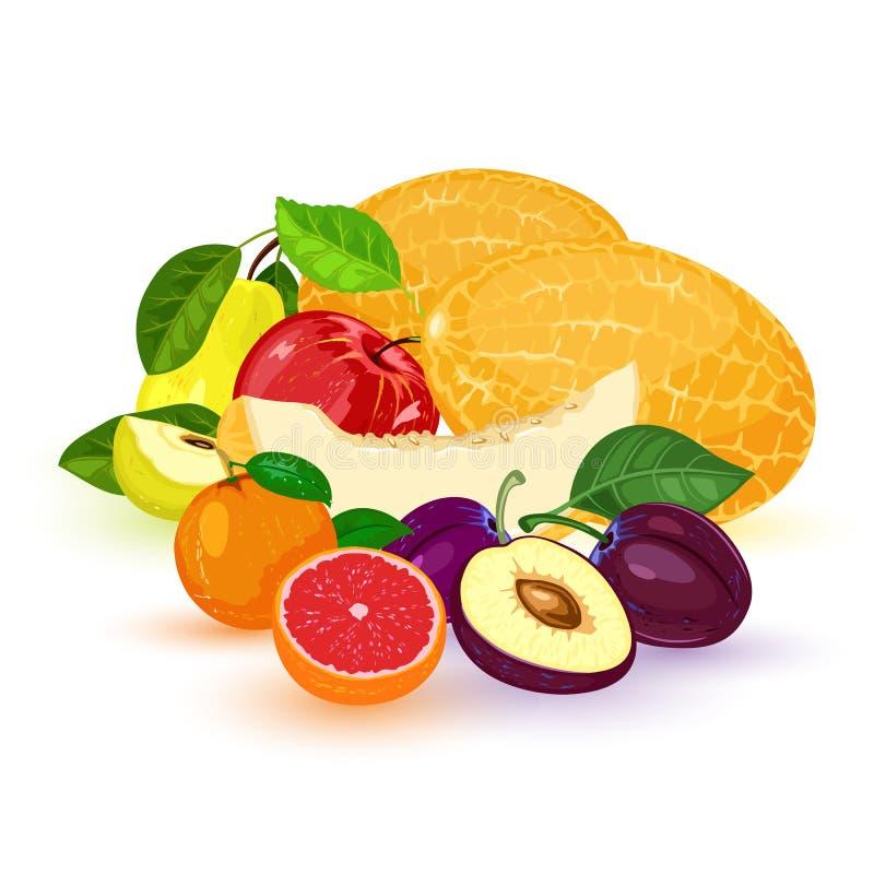 Vectorvruchten en bes: appel, peer, mandarin, mandarijn, grapefruit, pruim, meloen Stapel van verschillende vruchten met bladeren vector illustratie