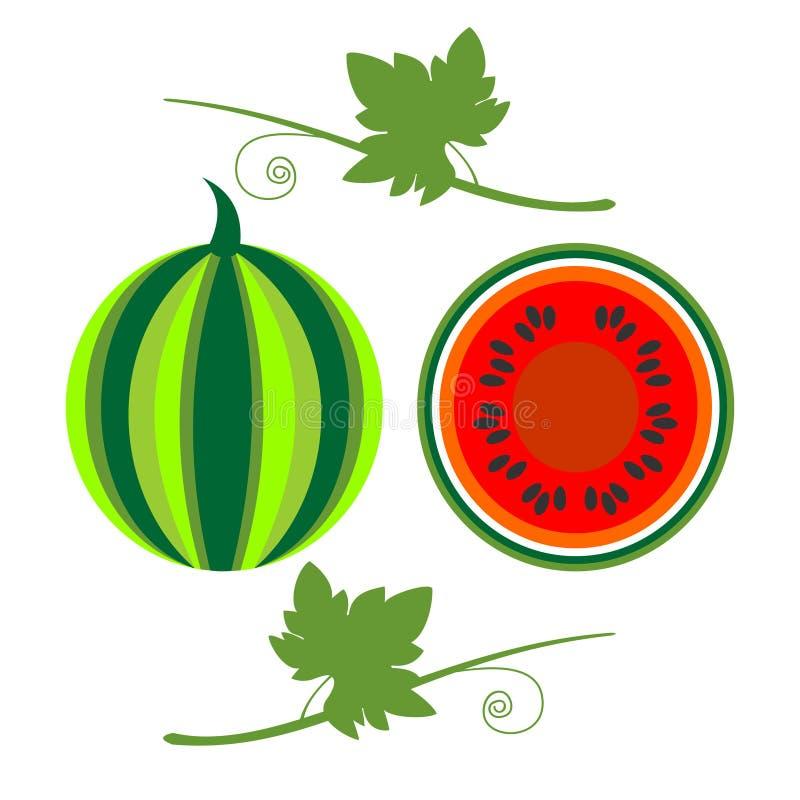 Vectorvruchten illustratie Gedetailleerde die pictogrammen van watermeloen met bladeren, geheel en half, over witte achtergrond w vector illustratie