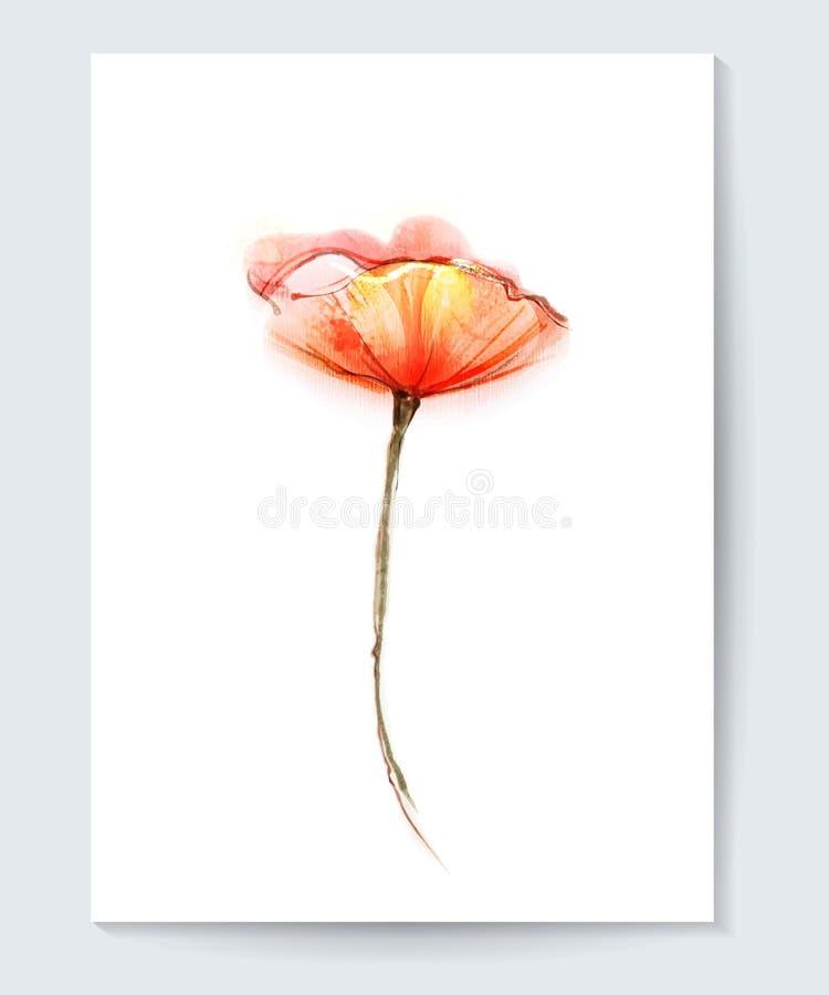 Vectorwaterverf het schilderen papaverbloem De rode achtergrond van de papaverbloem voor groetkaart royalty-vrije illustratie