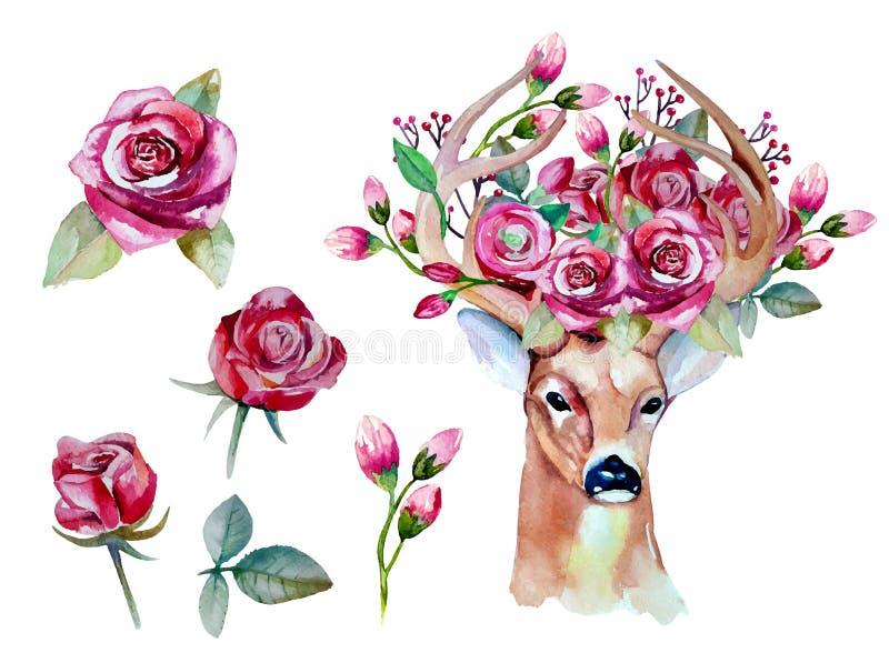 Vectorwaterverfhand getrokken bloemenreeks met herten vector illustratie