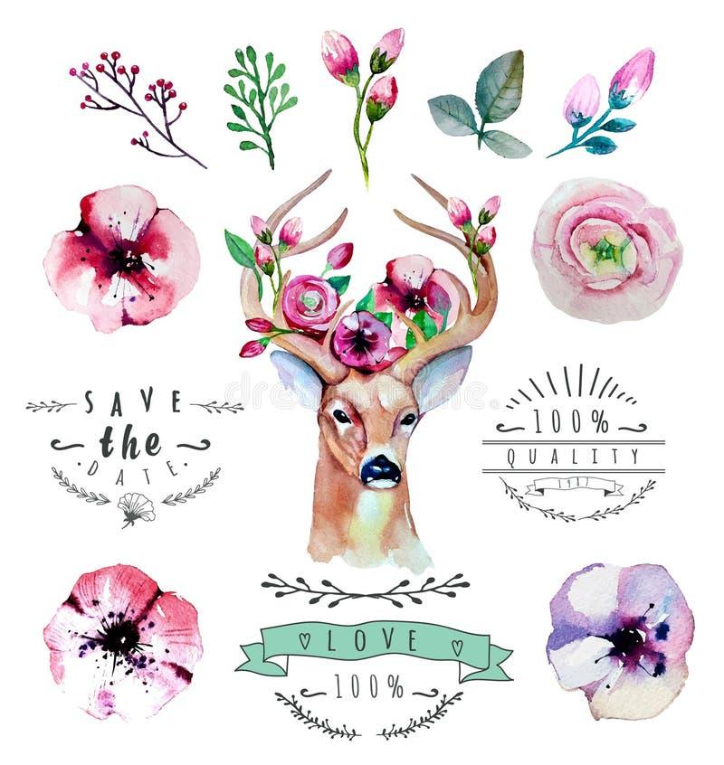 Vectorwaterverfhand getrokken bloemenreeks met herten stock illustratie