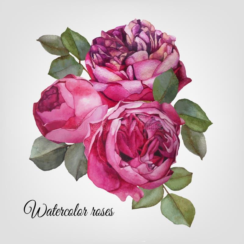Vectot blom- kort med buketten av vattenfärgrosor stock illustrationer