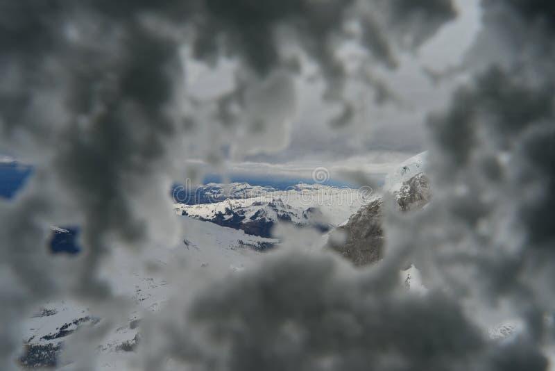 Veda attraverso la neve nell'inverno immagini stock