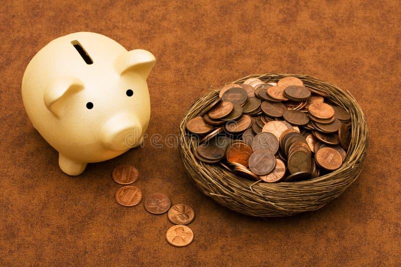 Download Vedere il vostro risparmio immagine stock. Immagine di piggy - 10832223