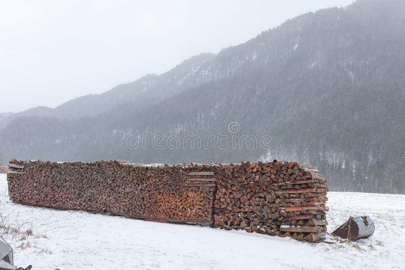 Vedträ på en snöig äng royaltyfria bilder
