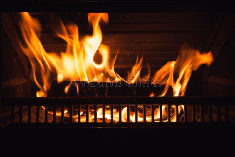 Vedträbrännskador på natten, slut upp royaltyfria foton