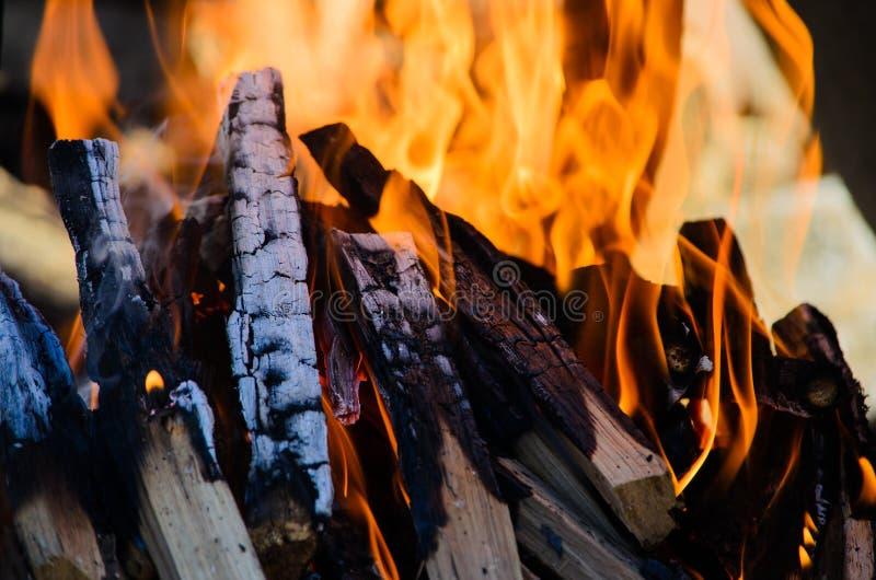 Vedträn som bränner med den varma orange flamman fotografering för bildbyråer