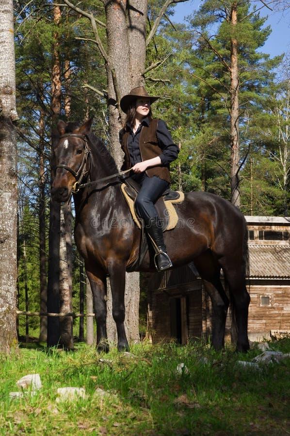 Veedrijfster op bruin paard royalty-vrije stock afbeeldingen