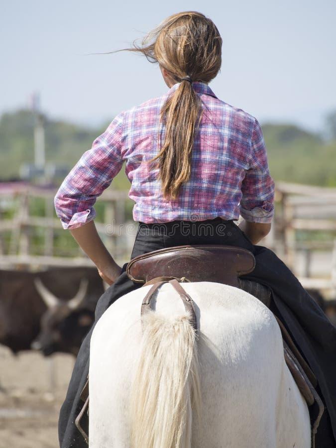 Veedrijfster op haar paard stock foto