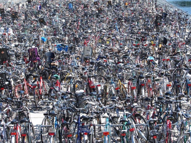 Veel fietsen royalty-vrije stock afbeelding