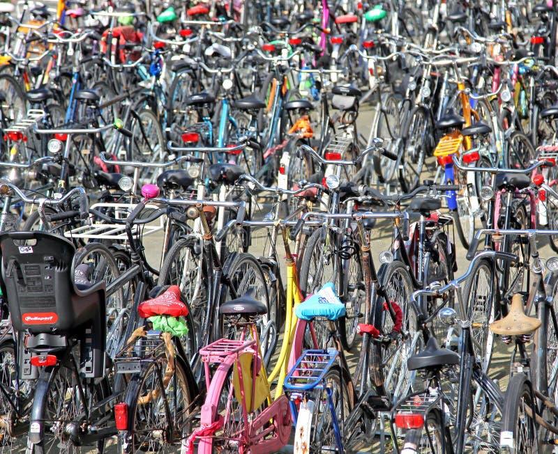 Veel geparkeerde fietsen stock foto